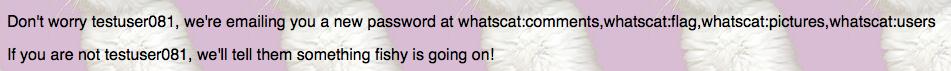 WhatsCat